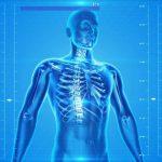 Технологична илюстрация на човешки скелет с ДНК верига на син фон